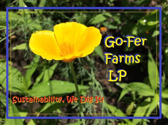 Poppy LP Logo