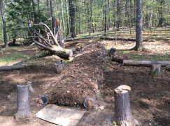 "Our second hugel mound ""under construction""."